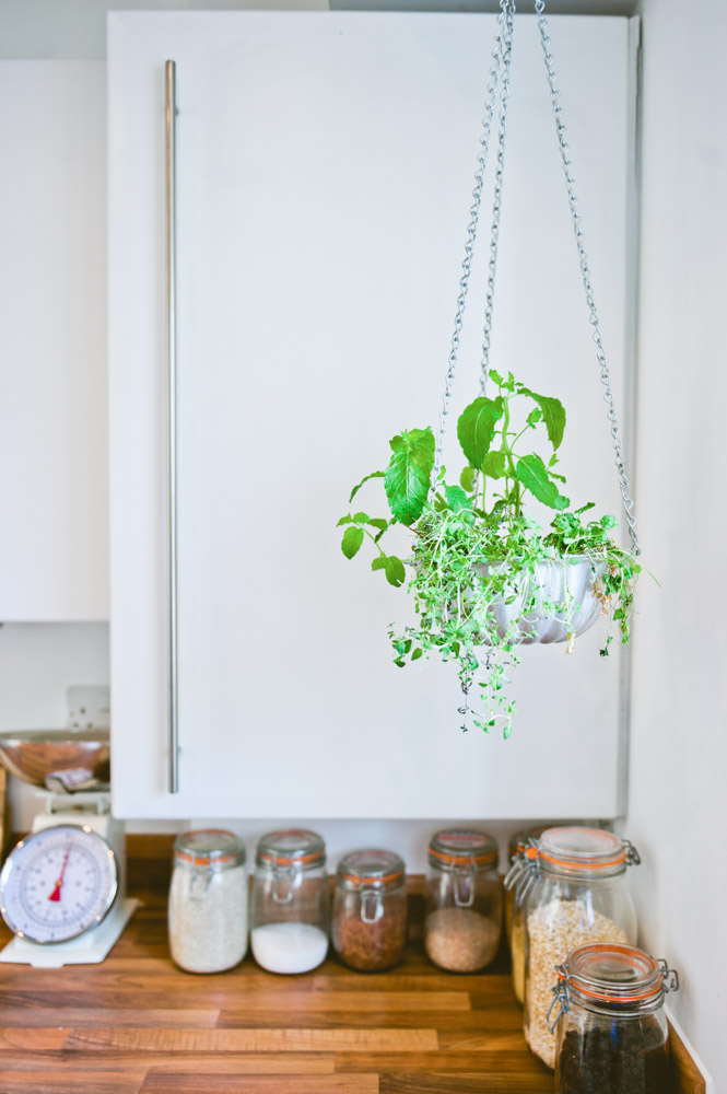 """I made the hanging planter from a vintage jelly mold,"" says Katy. ""I grow herbs in it, which is perfect for a small kitchen, especially as I have no garden."""