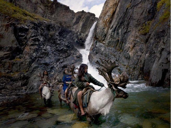 01-mongolian-reindeer