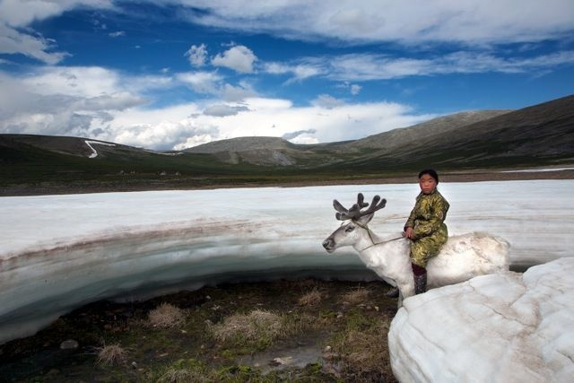 09-mongolian-reindeer