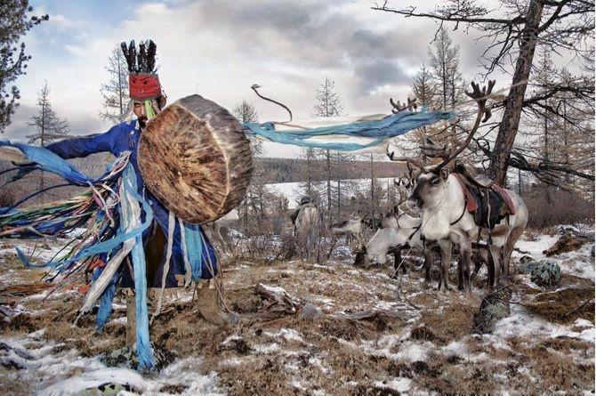 10-mongolian-reindeer