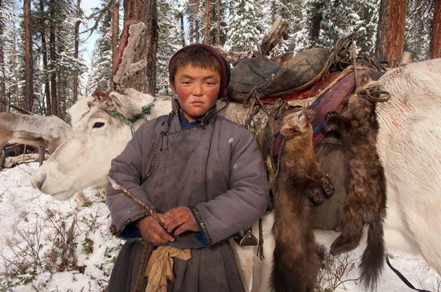12-mongolian-reindeer
