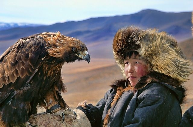 13-mongolian-reindeer
