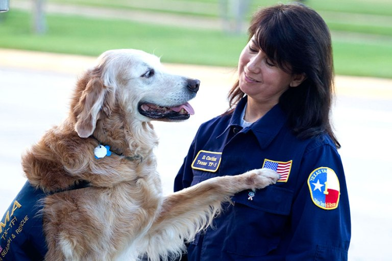 """""""Bretagne and I have a really strong bond. A lot of dog handlers say you get that one dog, and I've had several K9 partners, but Bretagne is that one dog for me,"""" said Denise Corliss, her handler"""