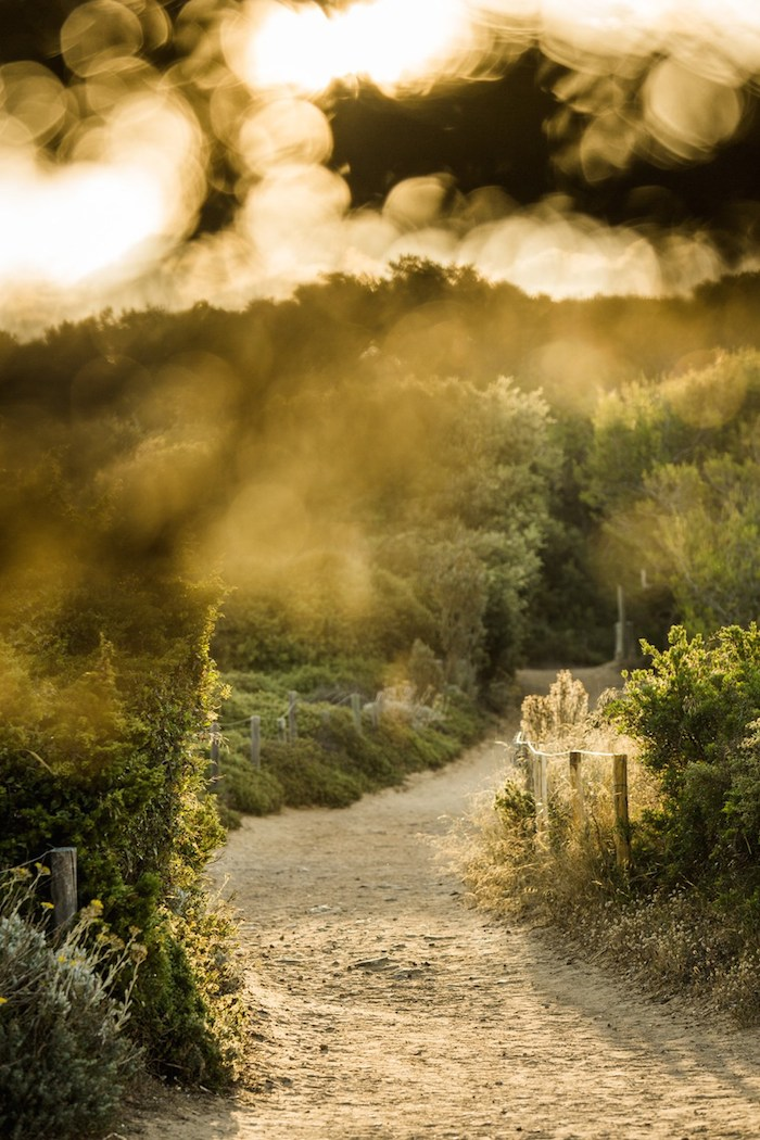 path-to-beach-france-by-martin-morrell