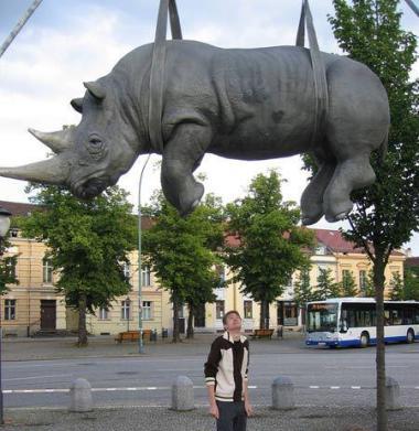 The Hanging Rhino located in Potsdam