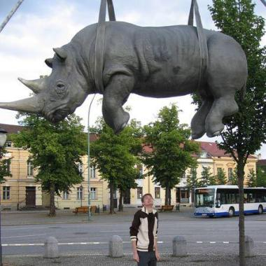 The Hanging Rhino located in Potsdam