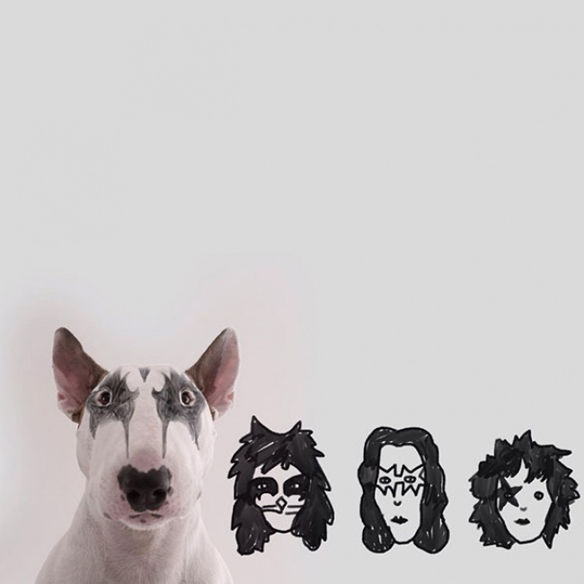 215005-R3L8T8D-650-Jimmy-the-Bull-Terrier12__605