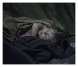 Horgos/Roszke. Mahdi is one and one half years old. He has only experienced war and flight. He sleeps deeply despite the hundreds of refugees climbing around him. They are protesting against not being able to travel further through Hungary. On the other side of the border, hundreds of police are standing. They have orders from the Primary Minister Viktor Orbán to protect the border at every cost. The situation is becoming more desperate and the day after the photo is taken, the police use tear gas and water cannons on the refugees.